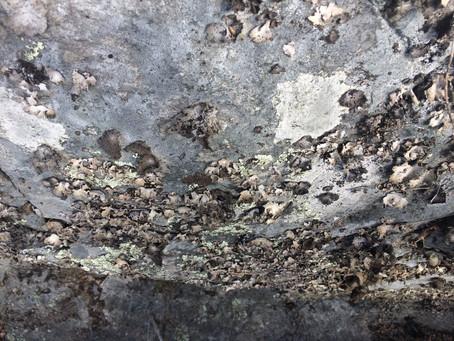 Lavar klär bergsväggen likt en planet.