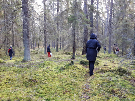 Skogsbad med friskvårdsinspiratörer och chefer på Lidingö Kommun
