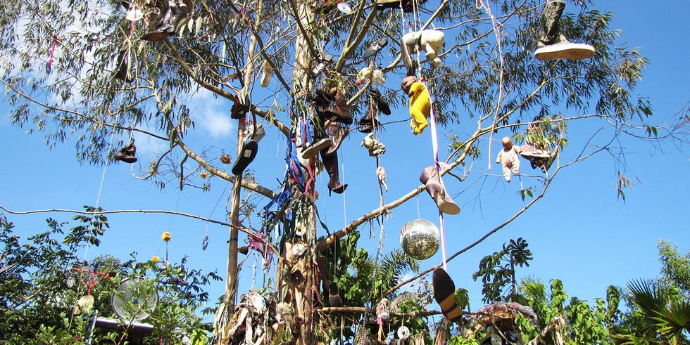 Instalação Árvore da Vida