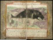 1024px-Adriaen_Coenen's_Visboeck_-_KB_78