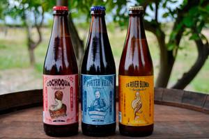 Indie Ale Craft Brewery