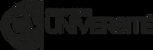 Logo CY.png