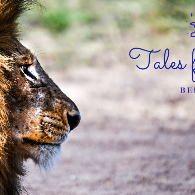 Find you inner lion!