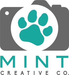 MInt_logo_4_final_.jpg