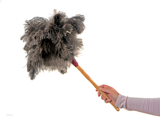 What to Expect from a House Cleaning Service