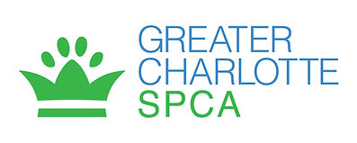 pet safe, ecofriendly, house cleaning, charlotte, home cleaning, carpet cleaning