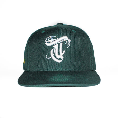 Righteous Snapback Green