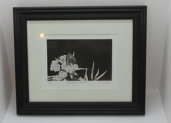 """Butterfly on Milkweed"" Solar Plate Framed Etching by Artisan Sandi Cirillo"