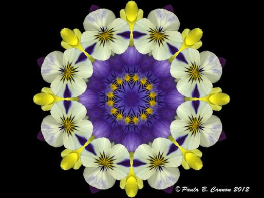 Artisan Paula Cannon and Her Kaleidoscope Designs