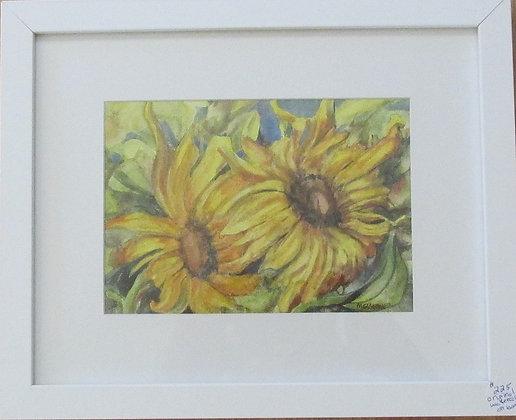 Original Daisy Watercolor by Artisan Helen Messemer