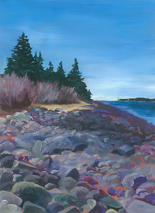 Acadia Rocky Coastline by Heather Roselle Barter