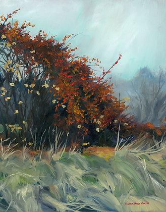 Farmington Winterberries by Heather Roselle Barter