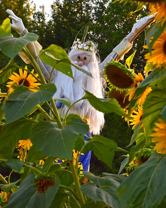King of the Sunflower