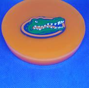 Gators Coaster