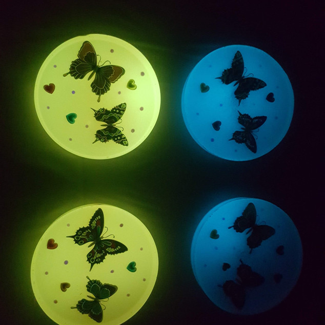 Butterflies Glow in the dark