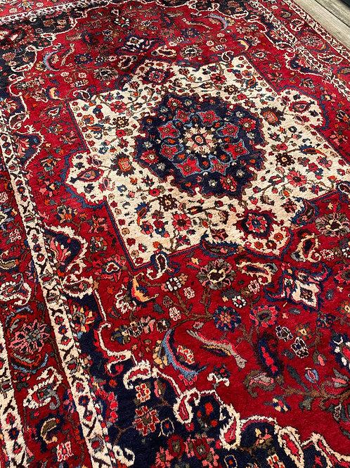 Persian Bakhtiari, Distressed
