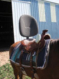 Adaptive Saddle.jpg