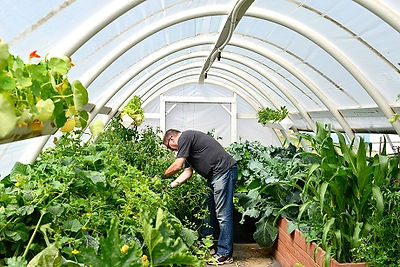 Inside Hoophouse.jpg
