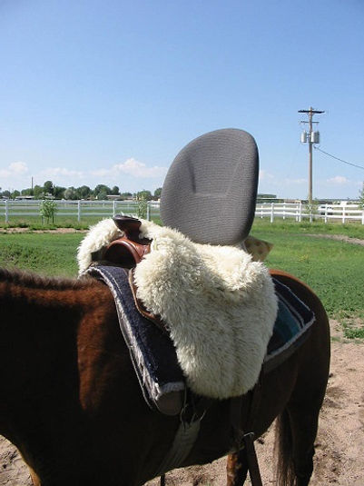 Adaptive Saddle 2.jpg