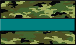 Jungle Camo Swallet Teal Band
