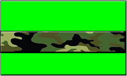Lime Swallet Jungle Camo Band