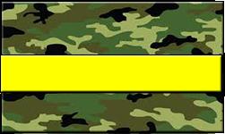 Jungle Camo Swallet Yellow Band