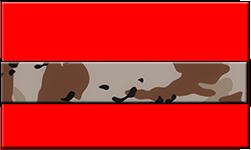 Red Swallet Desert Camo Band