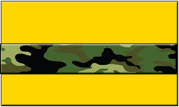 Gold Swallet Jungle Camo Band