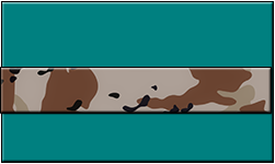 Teal Swallet Desert Camo Band