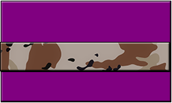 Purple Swallet Desert Camo