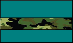 Teal Swallet Jungle Camo Band
