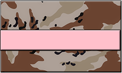 Desert Camo Swallet Pink Band