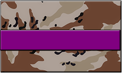 Desert Camo Swallet Purple Band