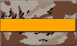 Desert Camo Swallet Orange Band