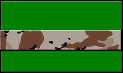 Green Swallet Desert Camo Band