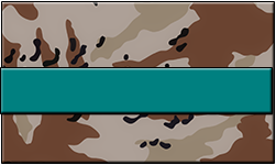 Desert Camo Swallet Teal Band