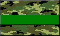 Jungle Camo Swallet Green Band