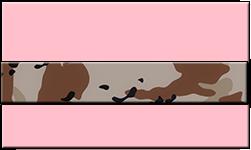 Pink Swallet Desert Camo Band