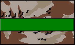 Desert Camo Swallet Green Band