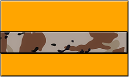 Orange Swallet Desert Camo Band