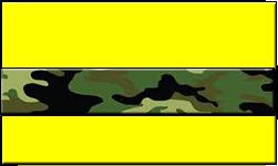 Yellow Swallet Jungle Camo Band