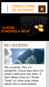 Propaganda e Marketing website templates – Consultoria de Sucesso