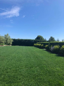 Lawn Applications - G02