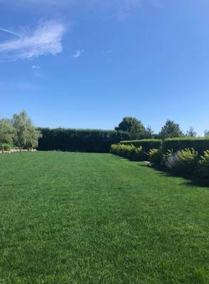 Lawn Applications - 02