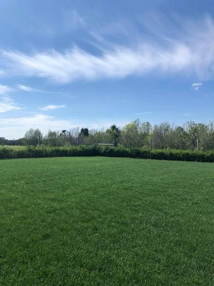 Lawn Applications - G04