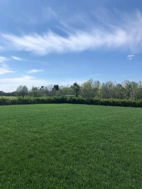 Lawn Applications - 04