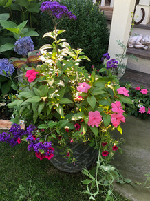 Flower Pot Design & Maintenance - G03