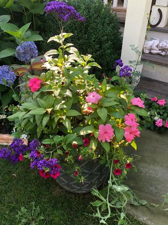 Flower Pot Design & Maintenance - 03