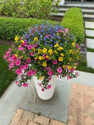 Flower Pot Design & Maintenance - 14
