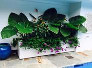 Flower Pot Design & Maintenance - G01